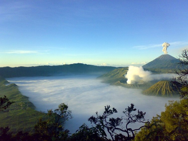 Bromo Midnight Tour (S. B. 01)